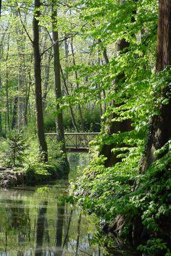 250px-Pont-Bois_parc-Tête-d'Or