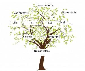 arbre généalogique 16 7 2015