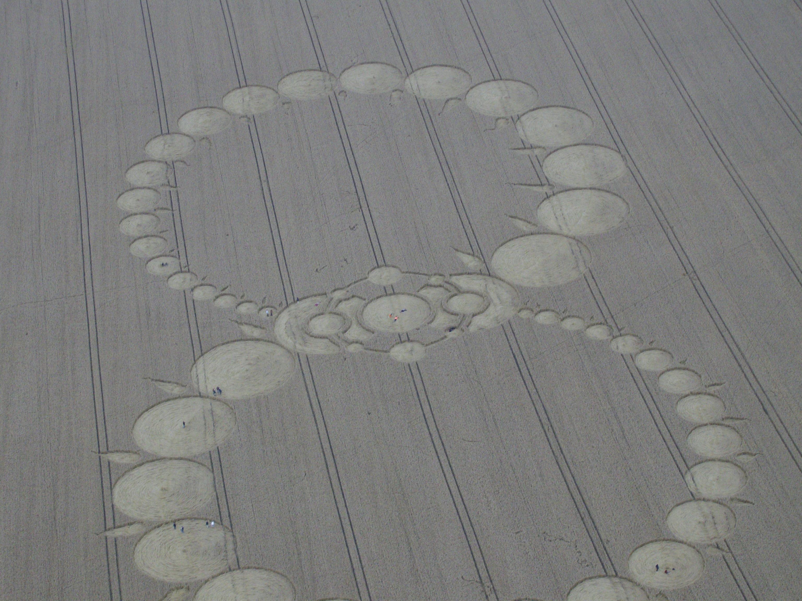 Photothèque personnelle - Crop circle du 8-8-2008 Milk Hill (UK)